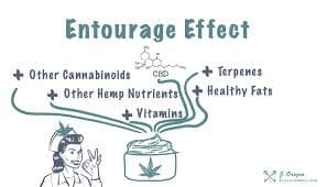 Entourage Effect image